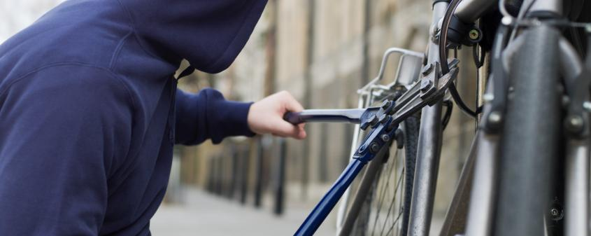 Anti-bike-theft or pet finder